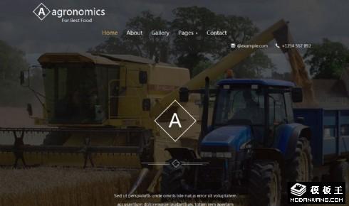 农业经济响应式网站模板