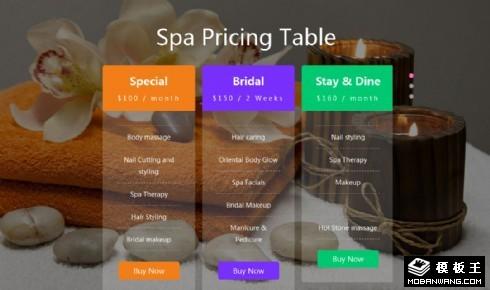 SPA服务价格表切换组件网页模板
