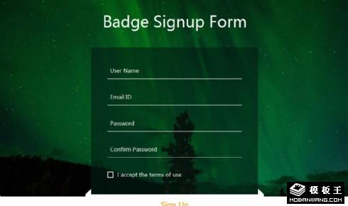 绿光星空注册框网页模板