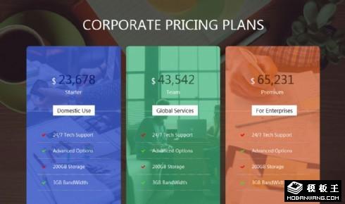 企业产品定价响应式网页模板