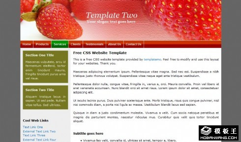 红色草莓EDM网页模板