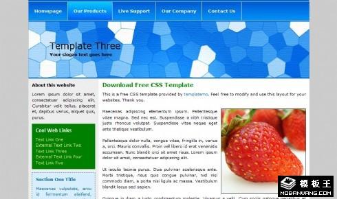 蓝色泳池马赛克EDM网页模板