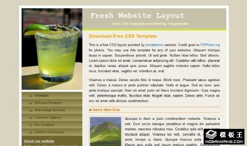 健康产品信息网页模板