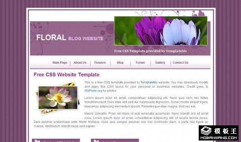 紫色鲜花介绍网页模板
