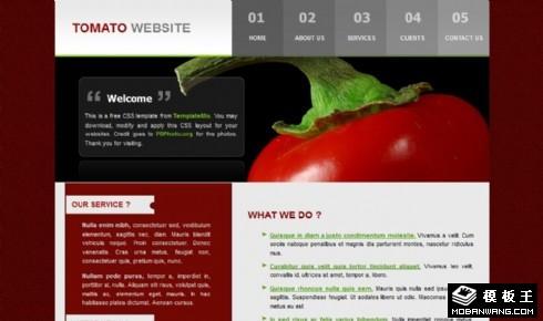 暗红番茄产品介绍网页模板