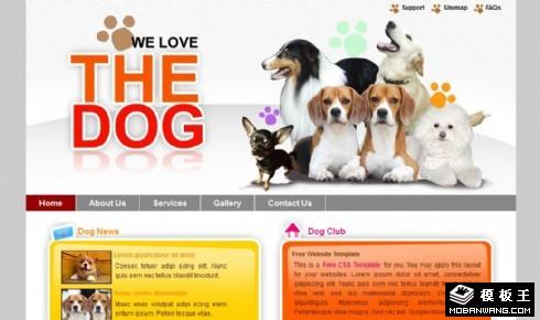 宠物狗爱好者乐园网页模板