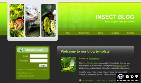 绿色昆虫生物BLOG网页模板