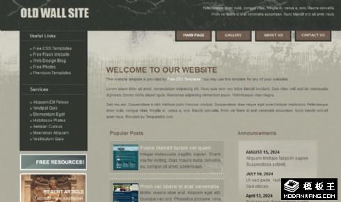 斑驳旧墙风格信息网页模板