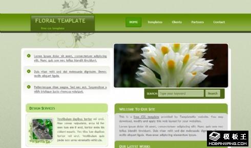 绿色花饰网页模板