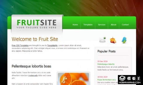 水果市场信息介绍网页模板