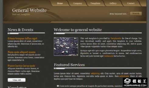 深咖啡色企业介绍网页模板