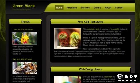黑绿UI产品介绍网页模板