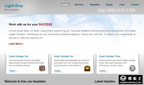 浅灰简单信息动态网页模板