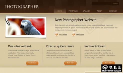 摄影服务信息网页模板