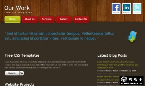 设计服务信息展示网页模板