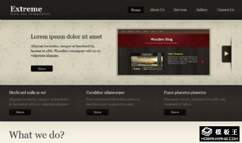 极致设计服务公司网页模板
