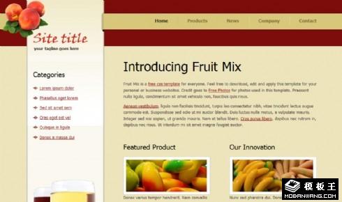混合水果产品网页模板