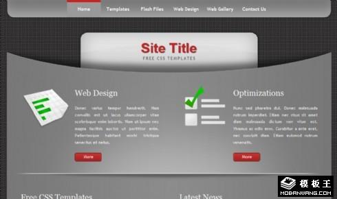 银灰曲线信息网页模板