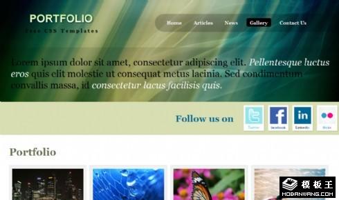 深绿图片相册网页模板