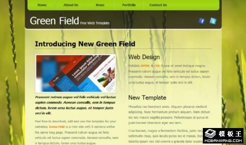 绿色田野动态网页模板