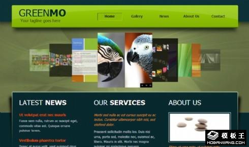 绿色动态服务介绍网页模板