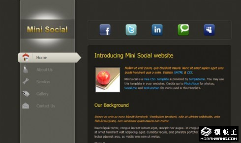 灰黑简单信息介绍网页模板
