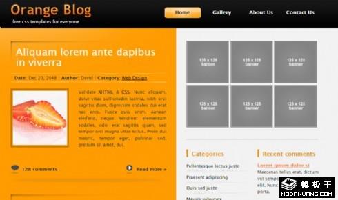 橙色二列BLOG网页模板