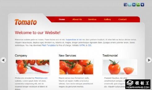简约番茄信息介绍网页模板
