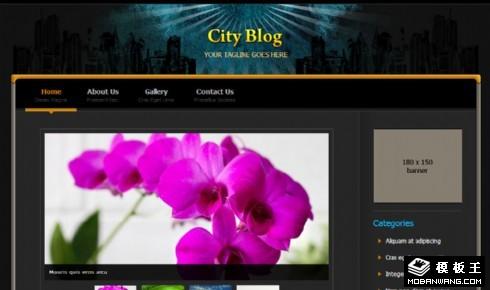 城市BLOG展示网页模板