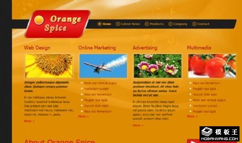橙色动态展示介绍网页模板
