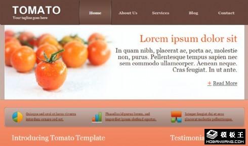 番茄产品业务网页模板