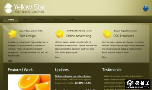 金绿光泽信息网页模板