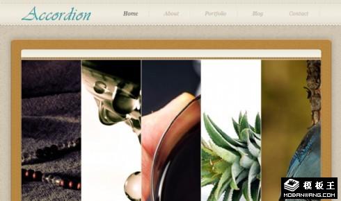 手风琴幻灯片信息介绍网页模板