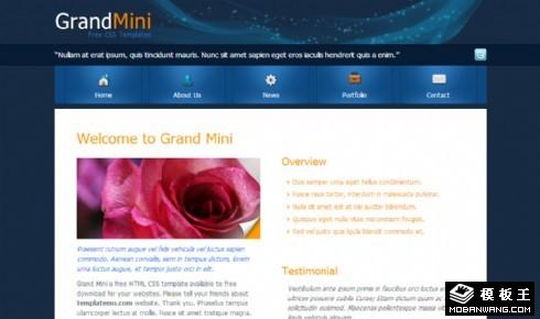 深蓝区块信息介绍网页模板