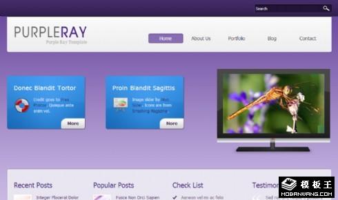 紫色渐变信息展示网页模板