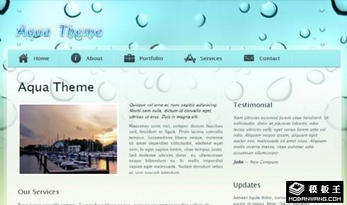浅绿色主题信息介绍网页模板