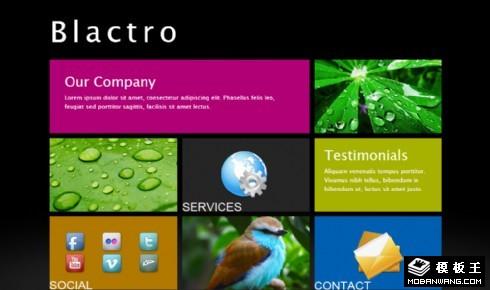 metro风格单页面信息网页模板