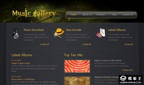银河系音乐信息网页模板