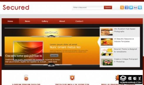 安全产品信息网页模板