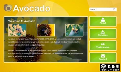 暗黄绿信息动态网页模板
