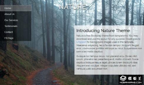 自然森林信息响应式网页模板