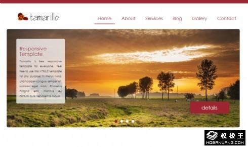 番茄主题服务日志展示响应式网页模板