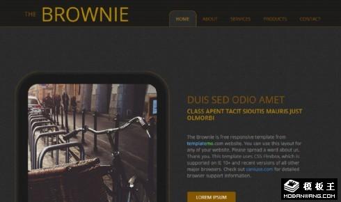 巧克力色创意产品响应式网页模板