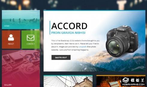 色彩构图摄影响应式网页模板