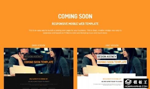 网站风格分屏选择响应式网页模板
