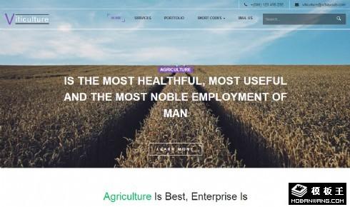 葡萄栽培酿制响应式网页模板