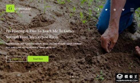 果蔬种子种植响应式网页模板