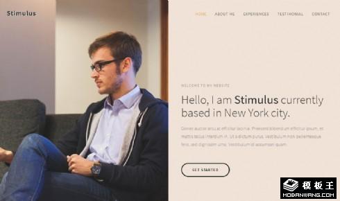 个人专业信息服务响应式网页模板