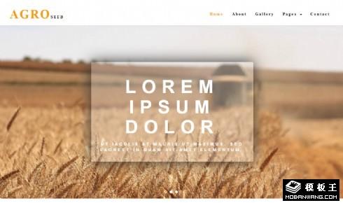 农业水稻种植响应式网站模板