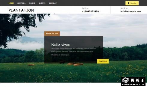 绿色生态种植响应式网页模板